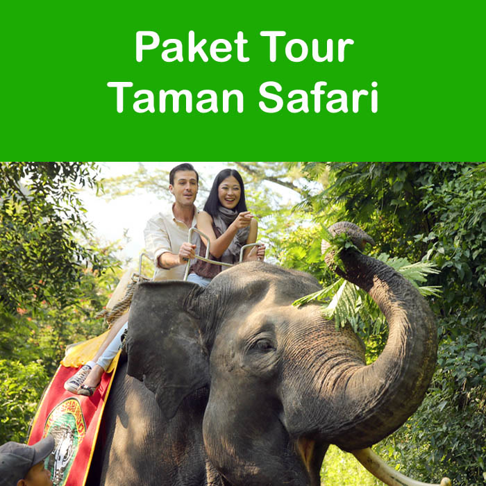 Harga  Paket Tour Taman Safari