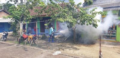 Cegah DBD di Desa Pananjung, Desa Segera Lakukan Fogging dipemukiman Penduduk