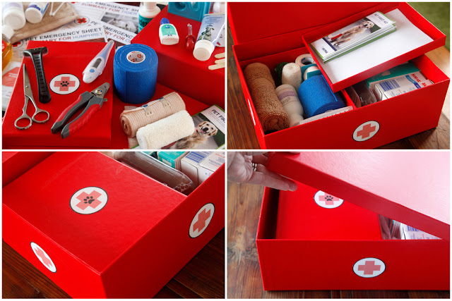 Making a first aid kit for pets
