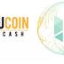 Ucoincash - ICO bi hài nhất gần đây trong cộng đồng Crypto Việt. Scam hay không scam?