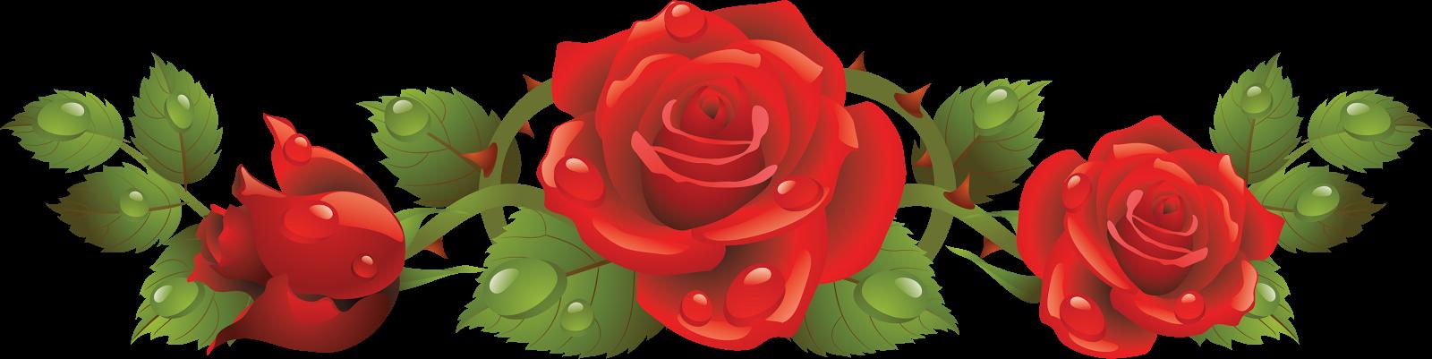roza246