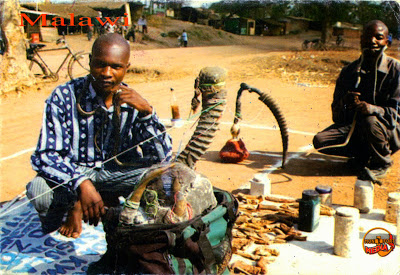 Image result for traditional healers in malawi