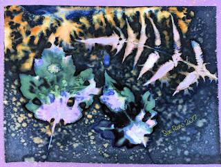 Wet Cyanotype_Sue Reno_Image 178