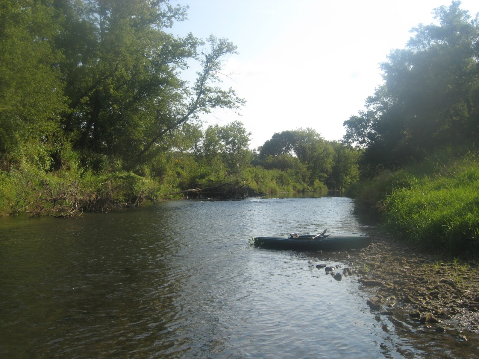 Minnesota driftless fly fishing trip report yakin 39 the root for Driftless fly fishing