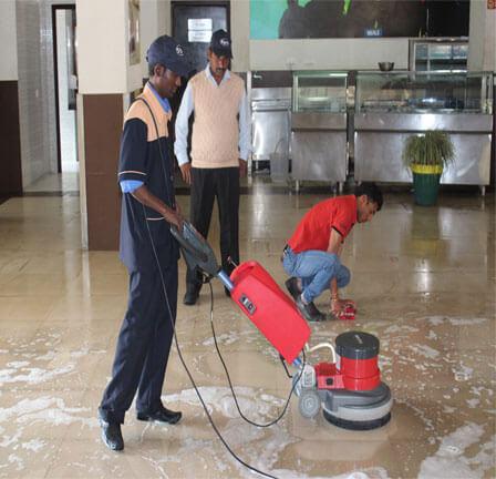 dịch vụ cho thuê máy chà sàn