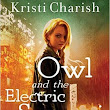 Loved It: Owl and the Electric Samurai by Kristi Charish