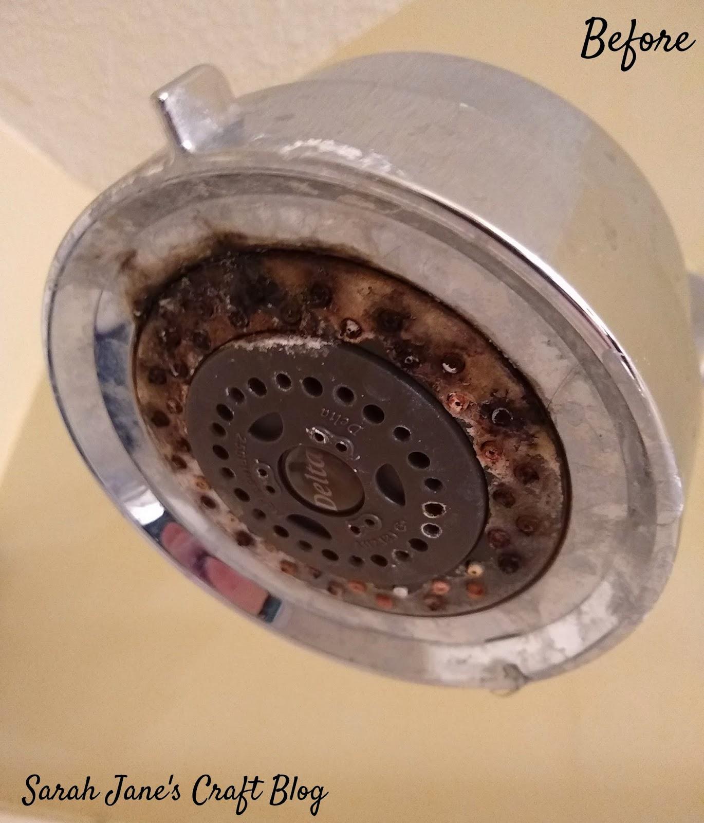 Sarah Jane S Craft Blog Tested Life Hack Diy Shower Head Cleaner