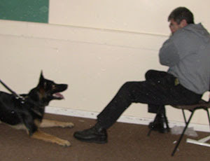 Max the German Shepherd asking for his toy from the trainer who tried to hide from him!