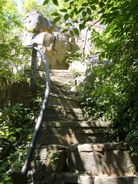 The Giant Steps Trail at East Rock Park