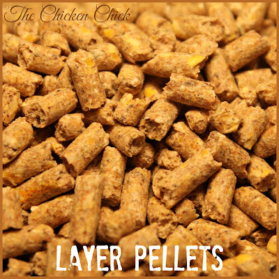 Layer pellets for laying hens