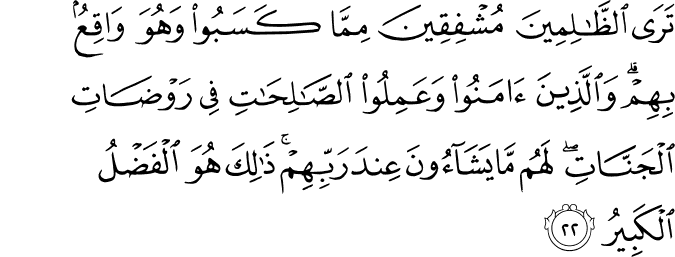 Surat Asy-Syura ayat 22