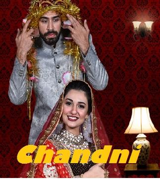 Chandni 2018 Urdu Movie 250MB HDRip 480p