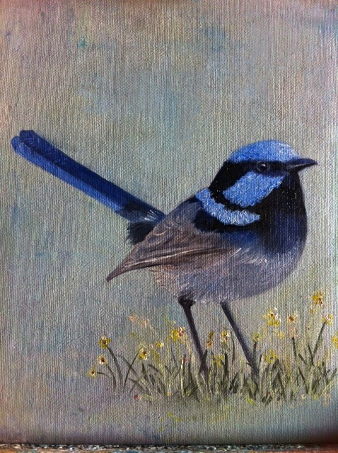 BLUE WREN……2ND PAINTING