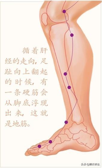 春季養肝,肝經敲打手法及肝經4大常用要穴的功效和按揉手法(養肝血)
