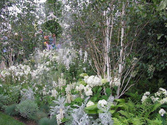biały ogród, białe kwiaty