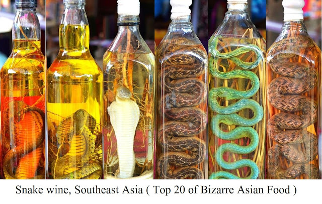 Snake Wine, Southeast Asia - top 20 of bizarre asian food