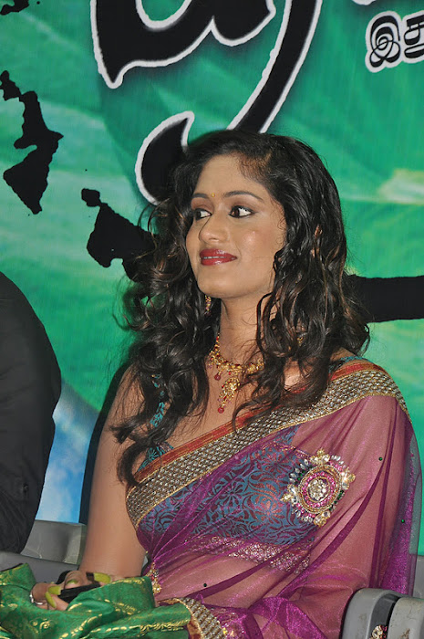 lavanya spicy transparent saree cute stills