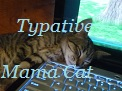 Typative Mama Cat