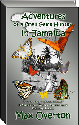 JAMAICA BOOK