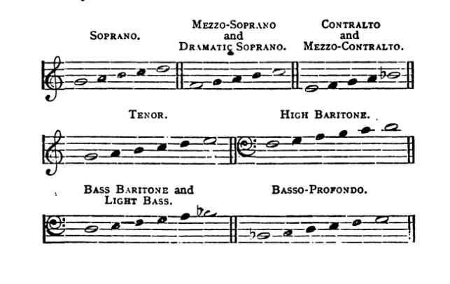 VOICETALK: Falsetto, Voice Type & Middle Tones