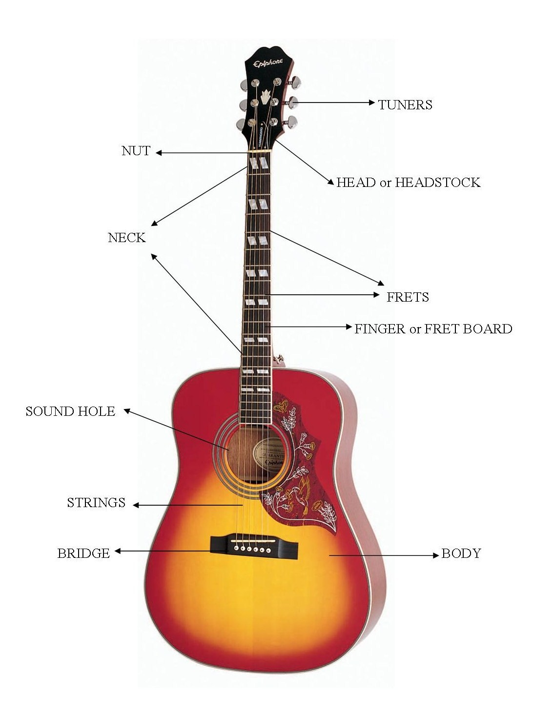 guitar parts diagram 1997 subaru impreza stereo wiring music lessons how to play the for beginners