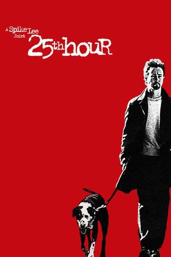 25th Hour (2002) ταινιες online seires oipeirates greek subs