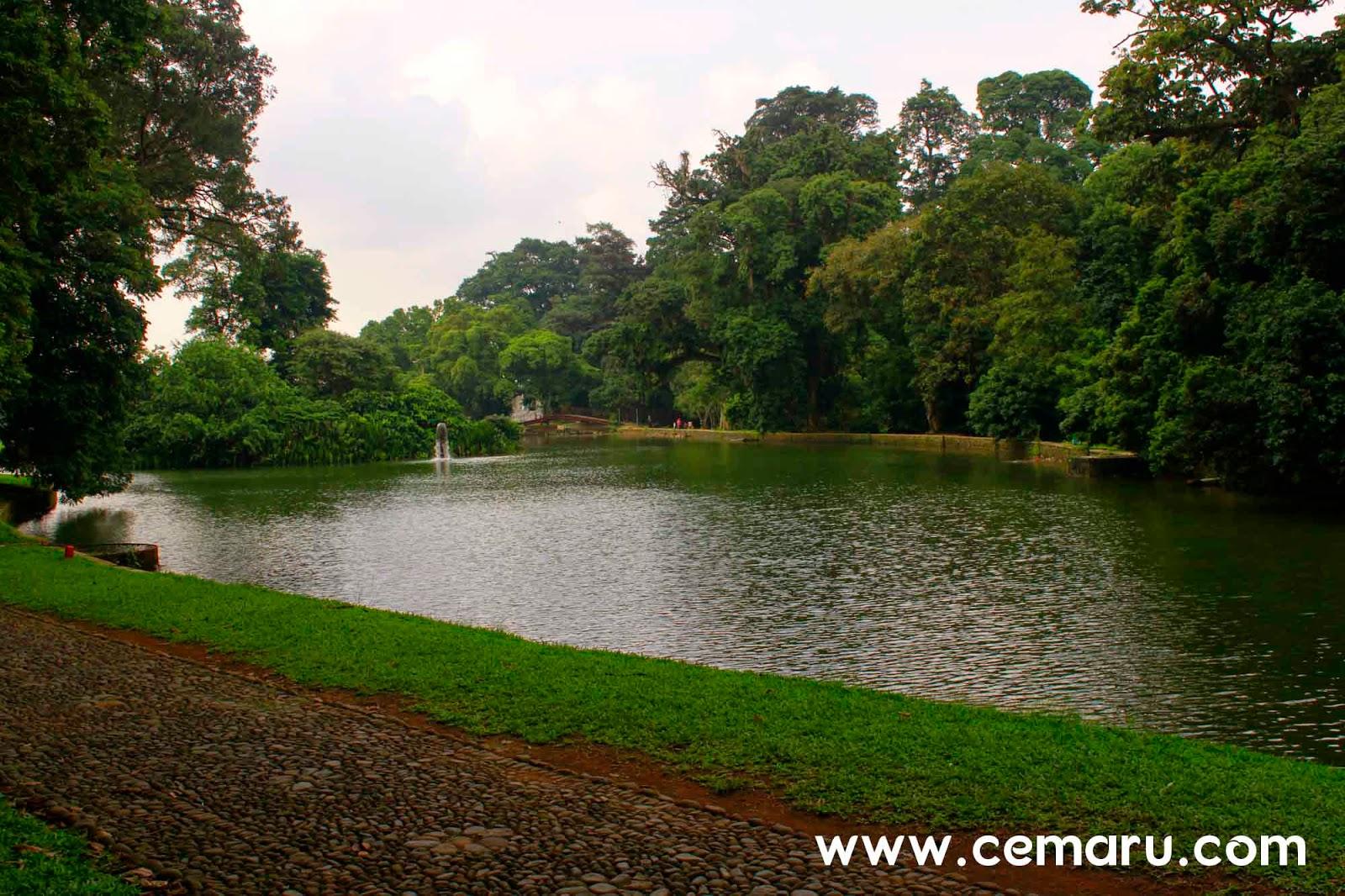 Kolam Gunting - Kebun Raya Bogor