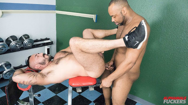 Alpha Male Fuckers - Alessio Romero and Ray Diesel