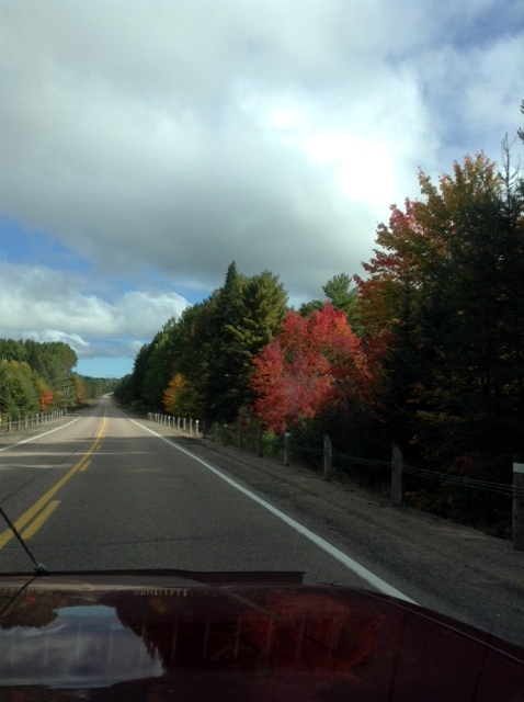 Road to Bonnechere Provincial Park, near Alice, Ontario