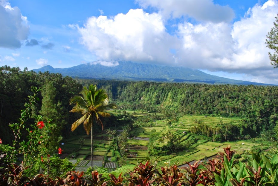 Bali_La natura dell'isola