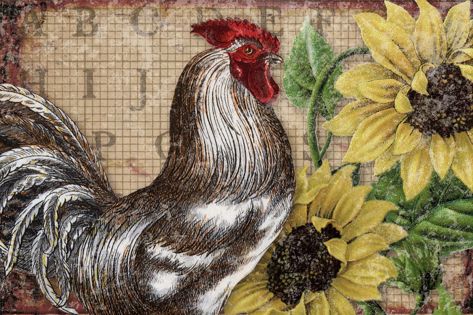photo regarding Free Printable Pictures of Roosters named Bountiful Heirlooms: Totally free Printables: Nation Roosters with