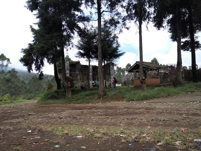 Perkebunan Kina Kertasari Bandung