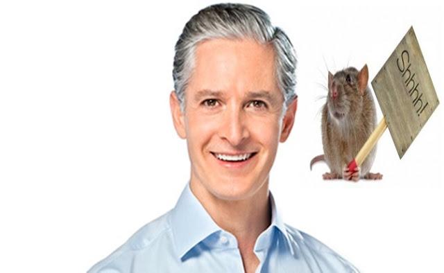 Ratas y plagas
