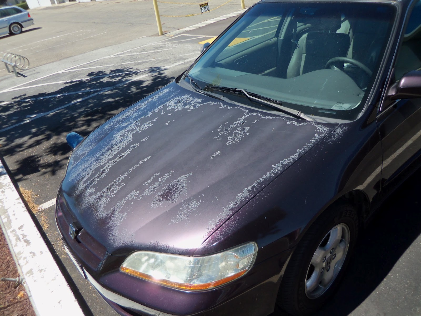 Typical car with fading, peeling clear coat and paint (delaminating paint)