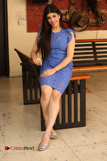 Actress Aditi Singh  Pictures in Short Dress at Movie Interview  0359
