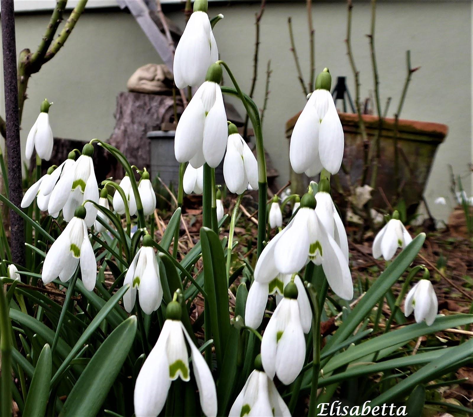 Morgen Ist Alles Anders Primavera Lente Fruhling Spring