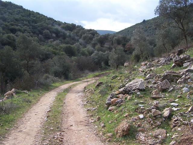 Manastır Mevkii yolu