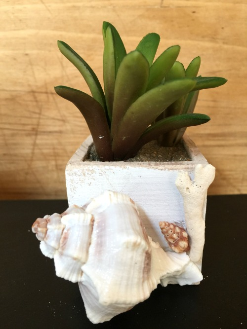 Create decorative pots for faux succulents. www.homeroad.net