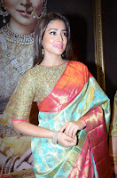Shriya Saran Looks Stunning in Silk Saree at VRK Silk Showroom Launch Secundrabad ~  Exclusive 023.JPG