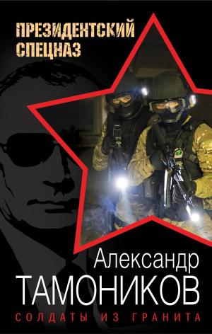 Александр Тамоников. Солдаты из гранита
