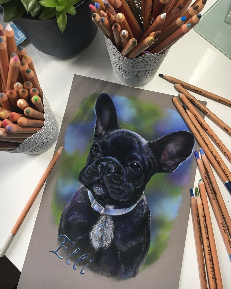 10-Eli-The-French-Bulldog-Tatjana-Bril-Domestic-and-Wild-Animal-Drawings-www-designstack-co