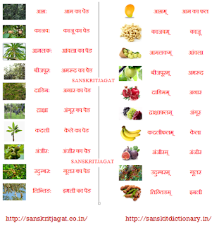 fruits_name_in_sanskrit
