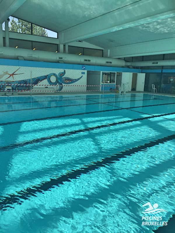 calypso piscine