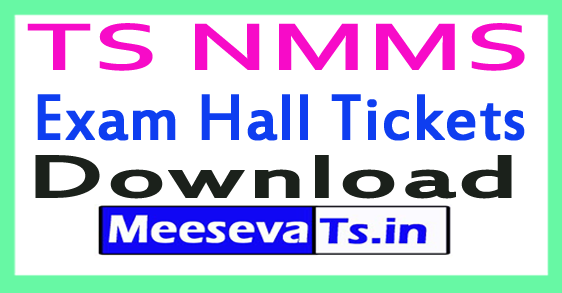 TS NMMS Exam Hall Tickets Download Nov-2017