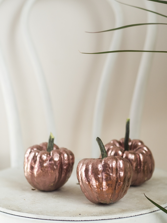 pumpkins ideas
