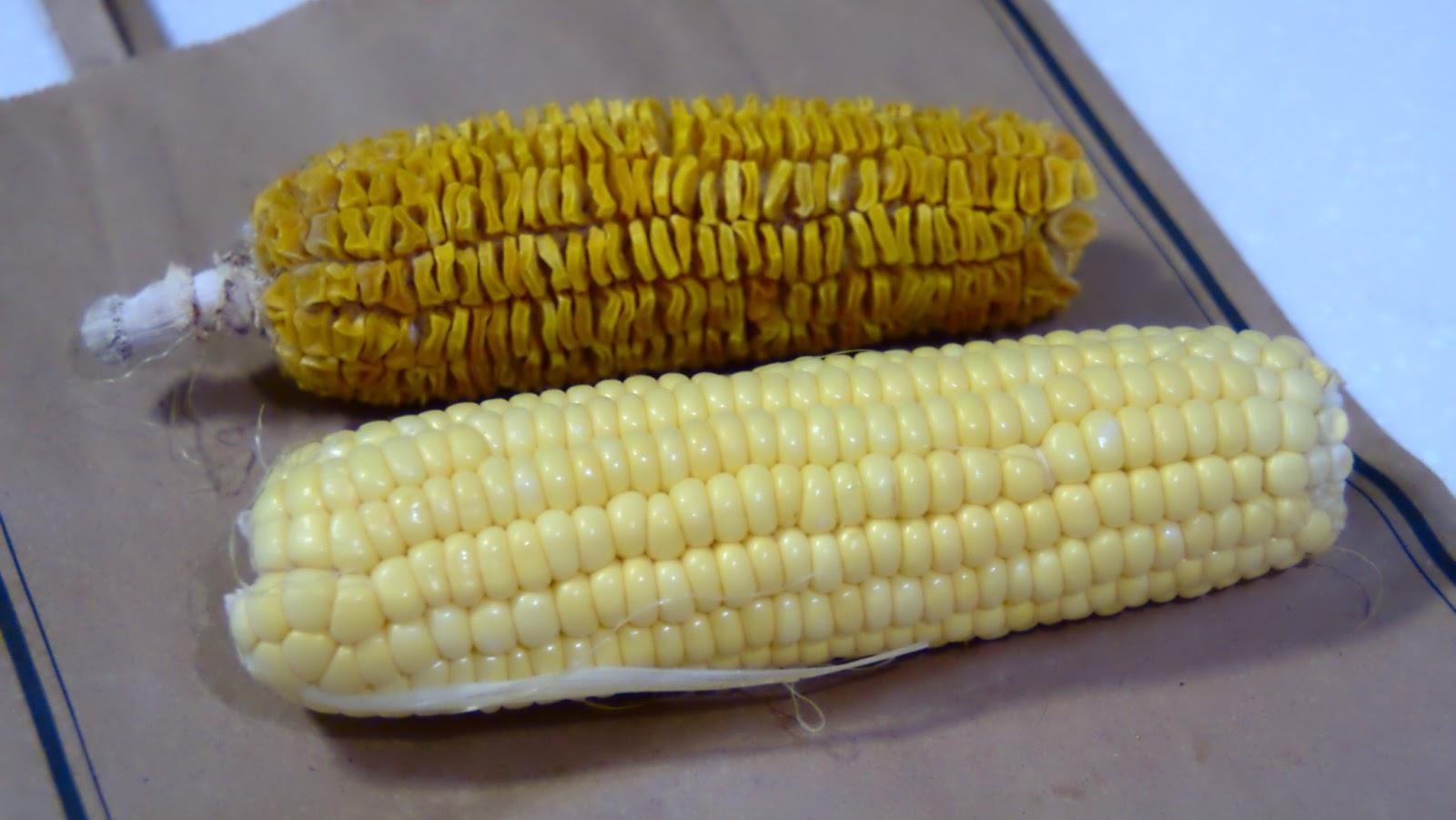 Corn On The Cob Microwave Popcorn Bestmicrowave