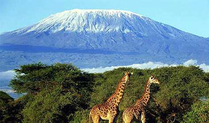 Mountain Pictures: Mountains Kilimanjaro