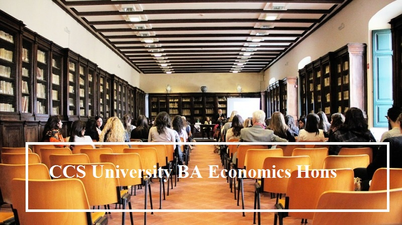 CCS University BA Economics Honours (Hons)