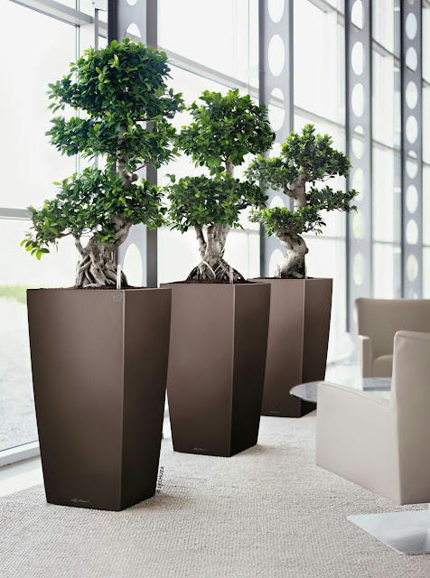 Concrete vase planters are considered as highly useful garden ideas to make more attractive flowers or plants in your home. This is ideal garden ideas especially for those who have small garden space. Concrete vase also useful inside of your home or office to put natural flowers, garden or if you want to add additional charm around you.