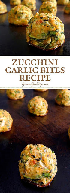 Zucchini Garlic Bites Recipe
